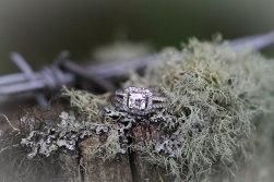 engagement13